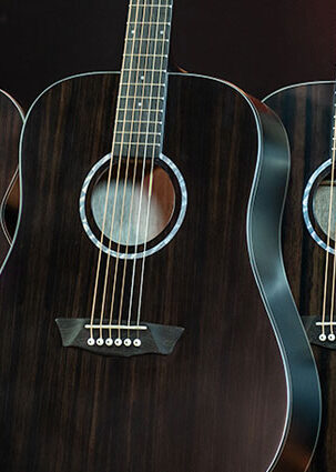 Washburn Deep Forest Ebony series guitars