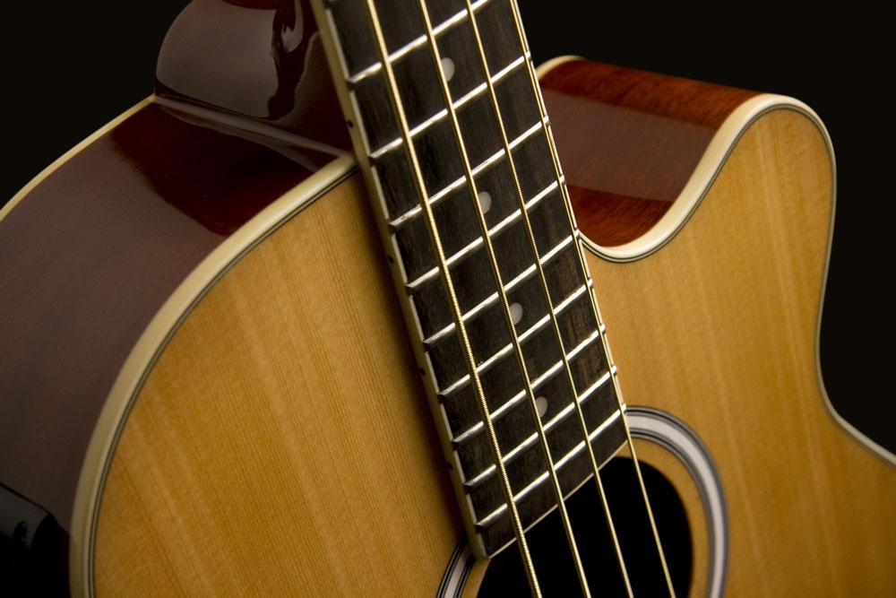 washburn acoustic bass guitar