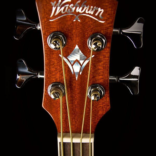AB5K close up of headstock