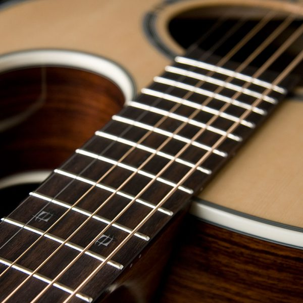 EA20 close up of 12th fret inlay