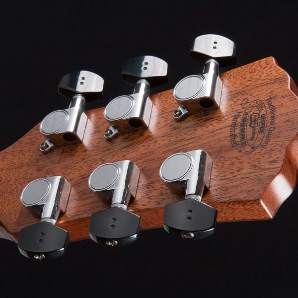 HD100SWCEK close up of the back of the head stock