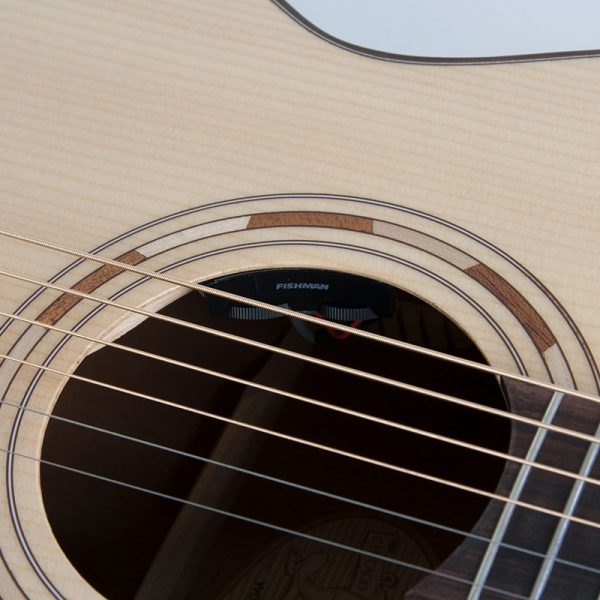 WCG10SENS close up of the sound hole and roseette
