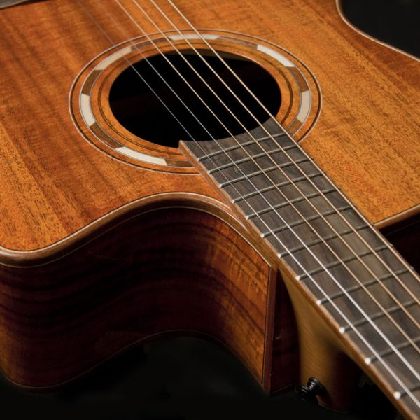 WCG55CE close up of the cutaway and sound hole roseette