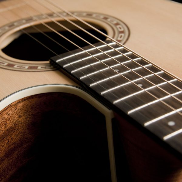 WD7SCE close up of the cutaway and sound hole roseette