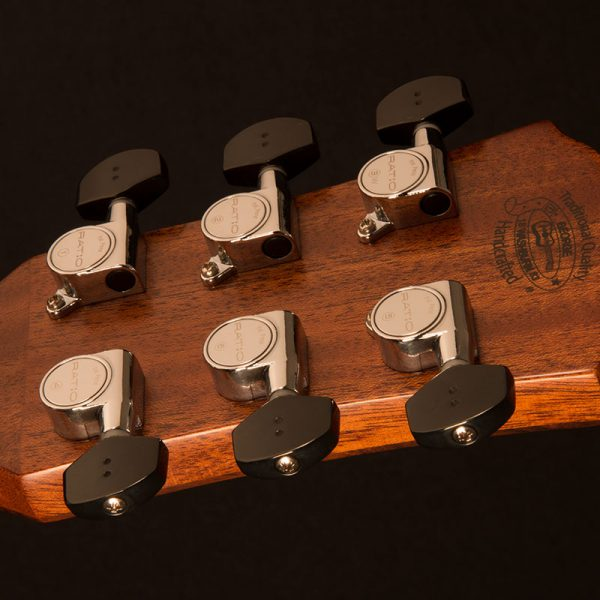 WLO100SWEK close up of the back of the head stock